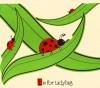 L-is-for-ladybug_750