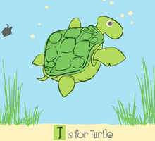 T-is-for-Turtle-220