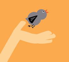 Baby_bird-220